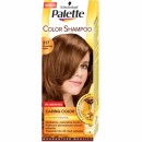 PALETTE COLOR SHAMPOO 317 ORZECHOWY BLOND