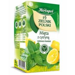 Herbata ZIELNIK POLSKI Mieta z cytryna