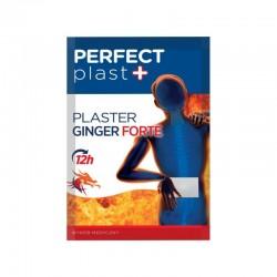 Perfect Plast + // PLASTER GINGER FORTE // 12h
